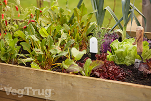 VegTrug Grow Care Range