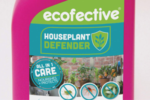 Eco-conscious and vegan gardeners re-enforce grow-your-own trend