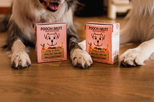 Pooch & Mutt, wet food cartons