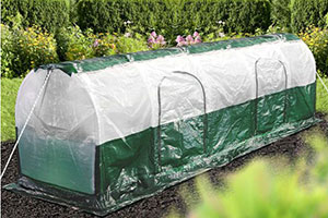 Bio Green Polytunnel