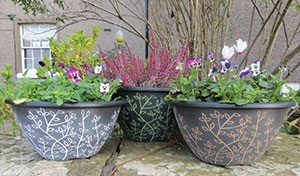 Serenity Planters and Bowls
