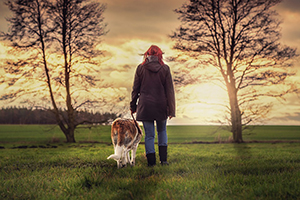 Is your dog keeping you in top form?