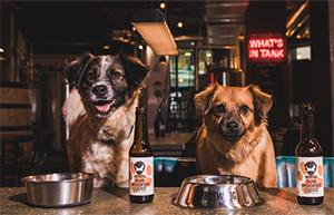 Brewdog - First Craft Beer For Dogs