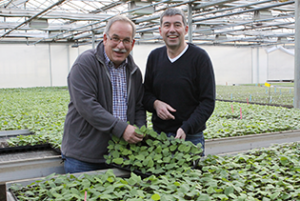 Lubera and Robert Mayer representatives in a greenhouse